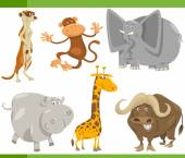 Safari animals cartoon set illustration — Stock Vector