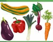 Vegetables cartoon set illustration — Stock Vector