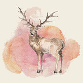 Watercolor hand drawn deer — Stock Vector