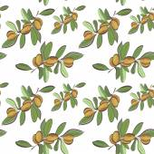 Seamless flat argan fruits pattern — ストックベクタ