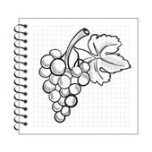 Doodle grapes on spiral notebook paper — Stock Vector
