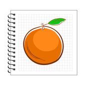 Orange on spiral notepad paper — Stock Vector