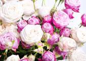 Close-up floral composition with Peony- roses — Stock fotografie