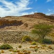 Timna national geological park of Israel. — Stock Photo #58144829
