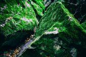 Mossy rocks — Stock Photo