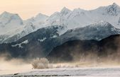 Snowcovered Mountains in  Alaska. — Stock Photo