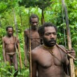 Oceania, Indonesia, Irian Jaya. Korowai tribe. — Stock Photo #61857787