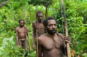 Oceania, Indonesia, Irian Jaya. Korowai tribe. — Photo