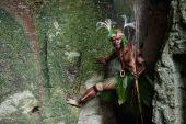 Le guerrier de la tribu papoue de Yafi — Photo