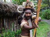 Dani Dugum warrior. — Stock Photo