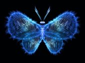 Metaphorical Butterfly — Stock Photo