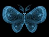 Accidental Butterfly — Stock Photo