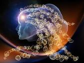 Evolving Intellect — Stock Photo