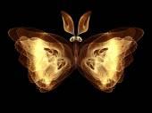 蝴蝶的错觉 — 图库照片