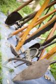 Old antique farming tools — Stock Photo