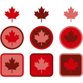 Maple leaf flat design — Stock Vector