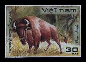 Post stamp. Bison Bonasus — Stock Photo