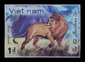 Sello de correos. Panthera Leo — Foto de Stock