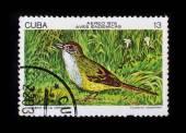 Post stamp. Birds - Torreornis inexpectata — Stock Photo
