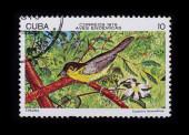 Post stamp. Birds: Teretistris fernandina — Foto Stock