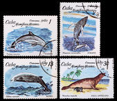 Post stamp. Sea animals. Cuba — 图库照片