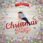 Kış tatil dekorasyon şakrak kuşu ile. Eps 10 — Stok Vektör