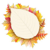 Autumn frame with fall leaf. EPS 10 — Stock Vector