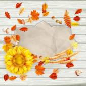 Colorful leaves background. EPS 10 — Stock Vector
