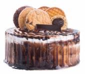 Cake. chocolate ice cream cake on background — Stock Photo