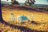 Outdoor in spring, white table — Stock Photo