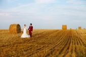 Newlyweds on Wedding Day. — Stockfoto