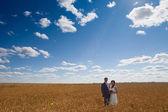 Le marié et la mariée romantique — Photo