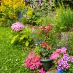 花园、 浪漫、 田园、 弹簧 — 图库照片 #52487713