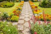 Garden landscaping with a path — Photo