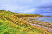 Cove bay with cliffs on the east coast of Scotland — Stock Photo