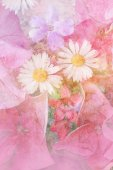 Beautiful, artistic, floral background — Stock Photo