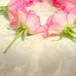 Pink roses in the shape of a circle — Stock Photo #66807107