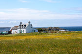Houses abd fields of Iona in the Inner Hebrides, Scotland — Stock Photo