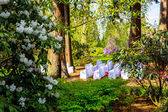 Beautiful, botanic garden in Spring with wedding settings — Stock Photo