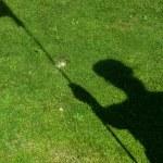 Flag  shadow on golf hole — Stock Photo #61494023