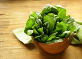 Fresh green spinach organic healthy and wholesome food — Stock Photo