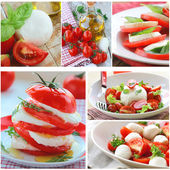 Collage versions of traditional Italian caprese salad — Stock Photo