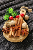 Spices anise, cinnamon, nutmeg on warm knitted background — Foto Stock