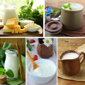 Collage of assorted dairy products (milk, cheese, yogurt, sour cream) — Stockfoto
