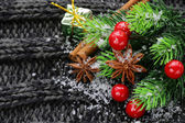 Christmas warm knitted background with fir tree and spices anise, cinnamon — Stock Photo