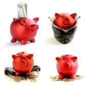 Collage funny red Pig Piggy with money on white background — ストック写真