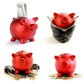 Collage funny red Pig Piggy with money on white background — Foto Stock