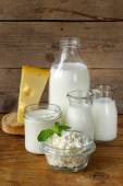 Assortment of dairy products (milk, cheese, sour cream, yogurt) — 图库照片