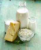 Assortment of dairy products (milk, cheese, sour cream, yogurt) — Stock Photo