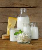 Assortment of dairy products (milk, cheese, sour cream, yogurt) — Photo